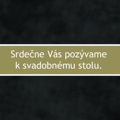 sfot13p