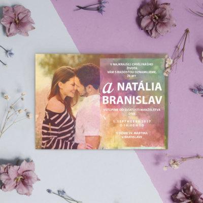 white-violet-bg-flowers
